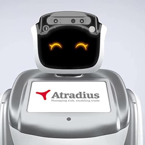 robots voor promotie